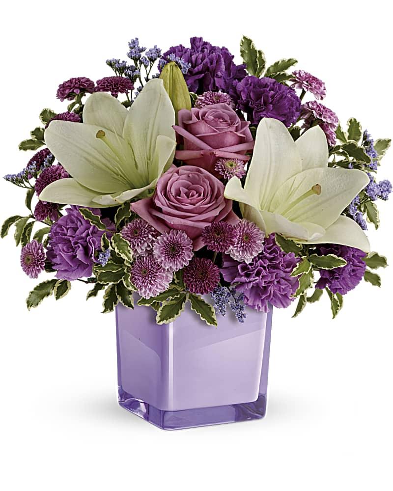 Violet Virtuose