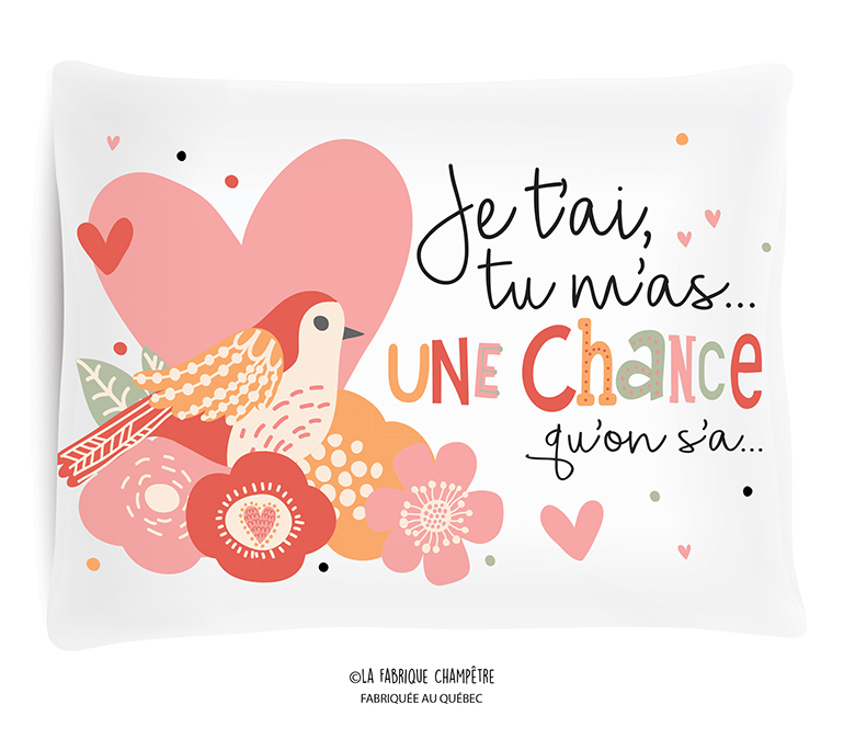 Coussin ¨Je T'ai Tu M'as…une Chance…¨
