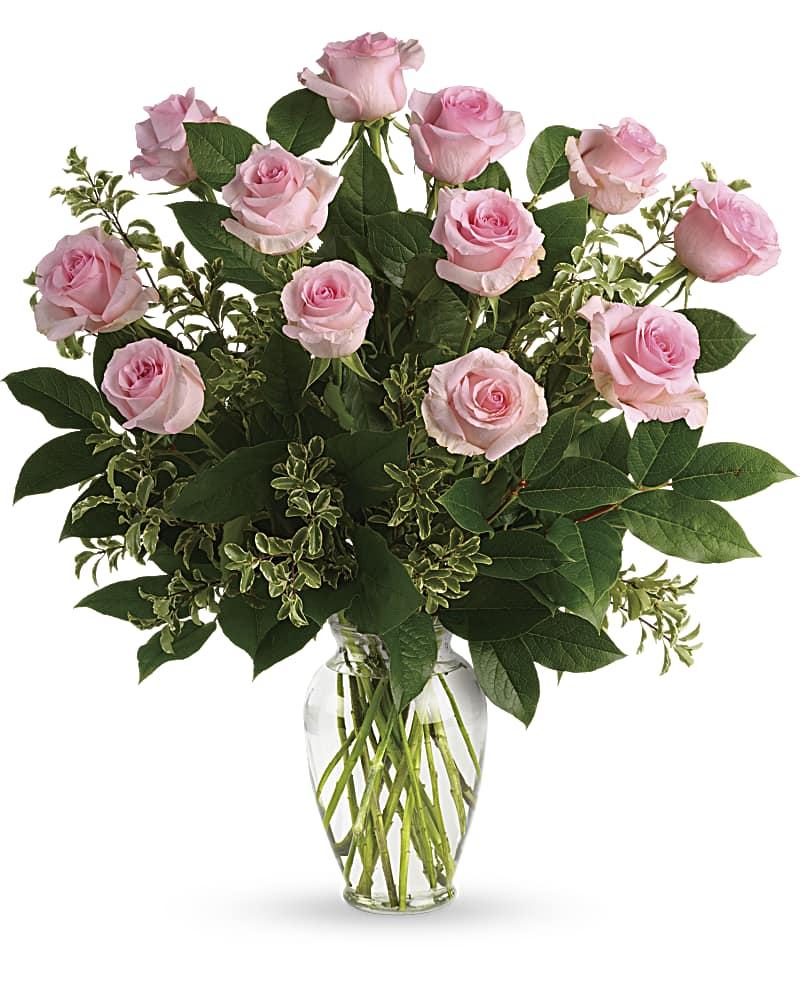 Rose Doux